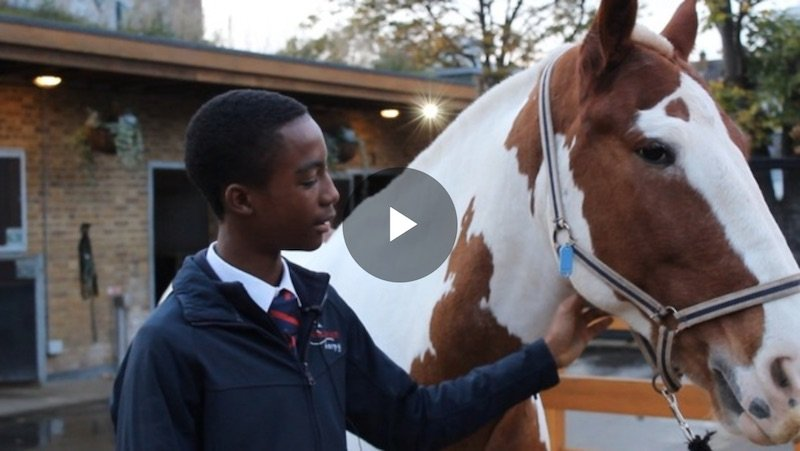 "ITV ""The inner city kids choosing horses over gangs"""